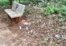 Vizinhos reclamam de abandono do Bosque em Bela Vista